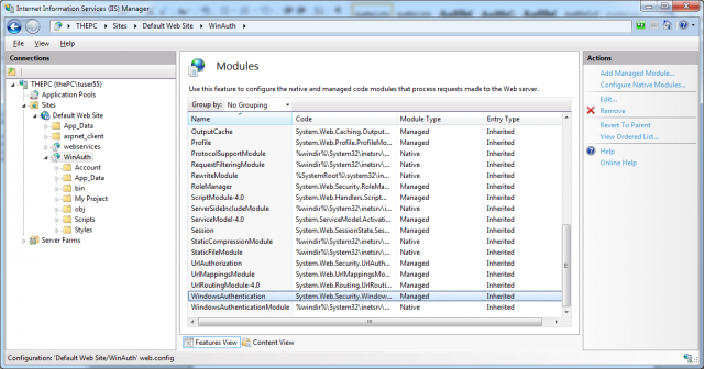 Modules implementing Windows authentication
